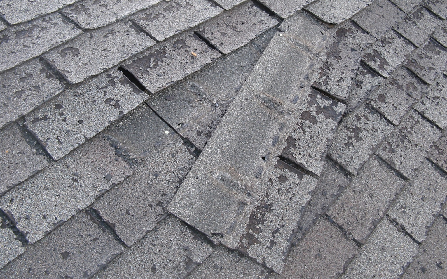 a shingle to wear out this rapidly in light of the fact that shingles years ago lasted three times longer copyright tim carter all rights reserved